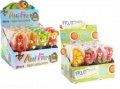Mini Jelly Lolly Tiere & Früchte 23g, 2x24 Pack